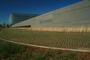 Hyundai Motor America - UC Verde Buffalo plantio de grama